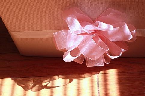 Bridal Shower Gift by Amie Fedora