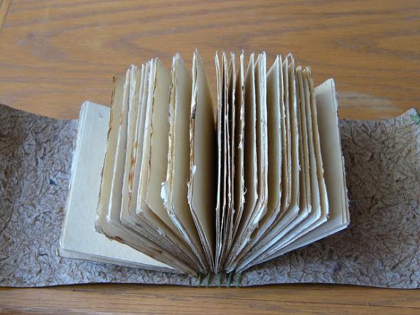 Tschai's Journal by Duc Ly.jpg